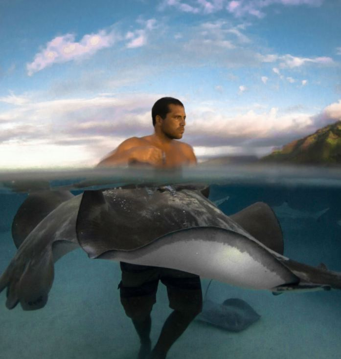 moorea moana tours owner, Pierrick in the water with stingrays
