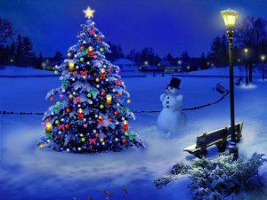 درخت کریسمس از چه زمانی مورد استفاده قرار گرفت؟