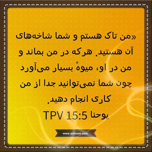یوحنا باب ۱۵ آیه ۵