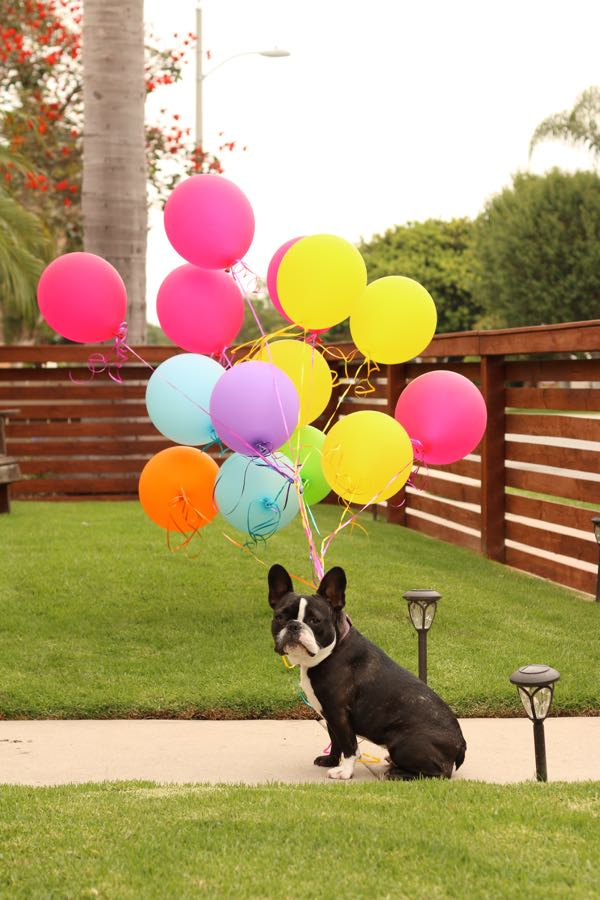 macballons