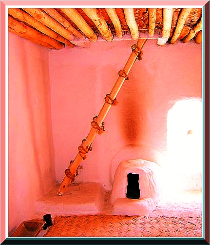 Why did the Ancient Catalhoyuk people make doors in the roof?