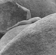 LĪSA LAYN │ 1980
