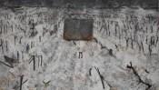 BLAC FLÊCS │ 2006 │ Ŷl, imulšn, acrilic, čācol, led bcs, brančz n plastr on canvs │ 330 x 570 sm │ Prîvt c̣lecšn