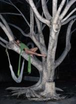 Biotope, Purple Fashion, Spring/Summer 2004