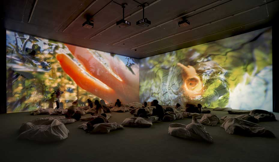 'Worry Will Vanish'. © Pipilotti Rist. Courtesy the artist, Hauser & Wirth and Luhring Augustine, New York. Photo: Alex Delfanne
