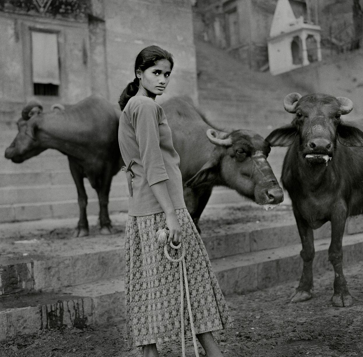 The buffalo lady, Varanasi, Uttar Pradesh. Photo: Jason Scott Tilley.