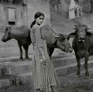 The buffalo lady, Varanasi, Uttar Pradesh. Photo: Jason Scott Tilley.