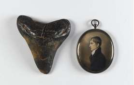 (l-r) Fossil shark tooth, Carcharodon megalodon, USA. Natural History Collection National Museum of Ireland, and John Comerford Robert Emmet (1778-1803), c.1803. Watercolour on ivory in a silver-gilt pendant, 6.5 x 5.7 cm. National Gallery of Ireland