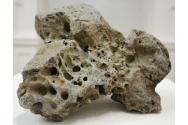 Connemara Stone No.2, found stone, 16.5 x 21 x 17 cm