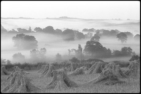 Early morning mist on The River Taw, Copyright: Beaford Arts