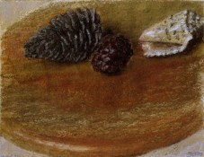 Shell and Cones, 1997, pastel on paper, 24.0 x 31.0 cm
