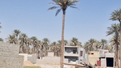 Photo of أمانة بغداد تتبرأ من مسؤولية منع التجاوزات وتلقيها على الأجهزة الأمنية