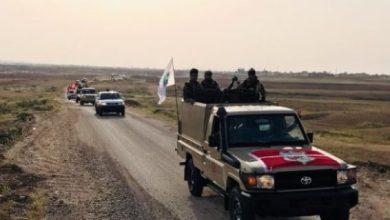 Photo of الحشد يباشر بتطهير اكثر من 230 كم على الحدود العراقية السورية