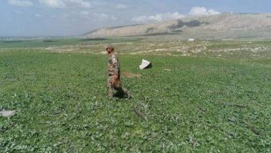 Photo of الحشد الشعبي يرفع 20 عبوة ناسفة بإحدى القرى في سهل نينوى