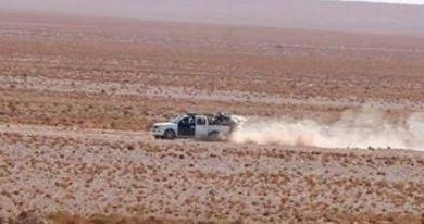 Photo of اجراءات أمنية احترازية في بادية الديوانية عقب التعرضات الارهابية الاخيرة