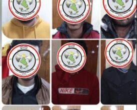 Photo of وكالة الاستخبارات:القبض على (١٢) ارهابي ضمن عصابات داعش في نينوى