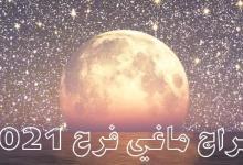 Photo of مع ماغي فرح.. توقعات الأبراج ليوم السبت