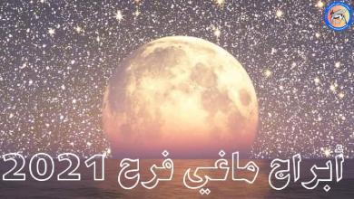 Photo of ماغي فرح.. الأبراج اليومية ليوم الجمعة 19__2__2021 🔮