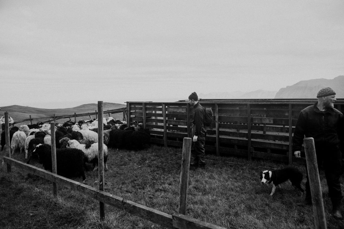 Faroe Islands travel