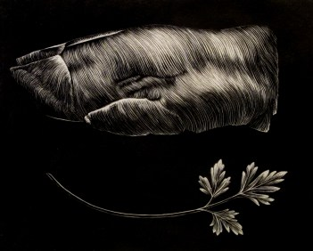 """relief engraving 4"""" x 5"""" 2010"""