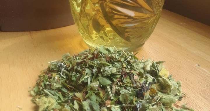 Ashtree Wildcrafting Stamina Potion Lite