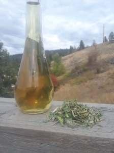 Tea: Sun Drop