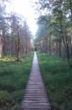 Varnikų takas prie Trakų