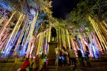 Porlwi by Light - Lights on of Company Garden