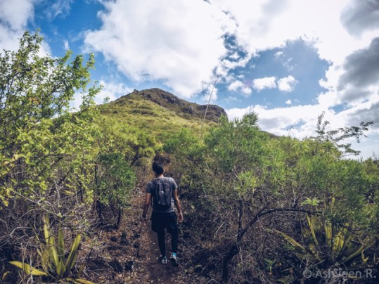 Hiking Tourelle Tamarin Mauritius - Going Forward