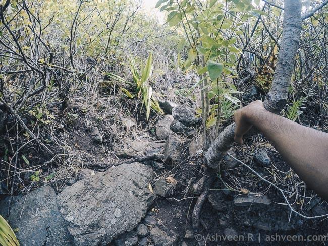 Hiking Trois Mamelles
