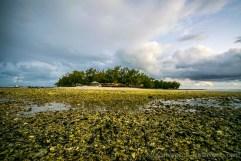 Instameet Mauritius IDDC WWIM14 - Low Tide