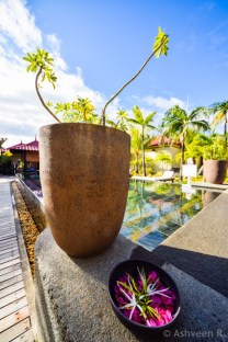 Instameet Mauritius: Tamassa Resort - The Spa