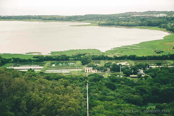MTB Mauritius - La Ferme - The Pipeline