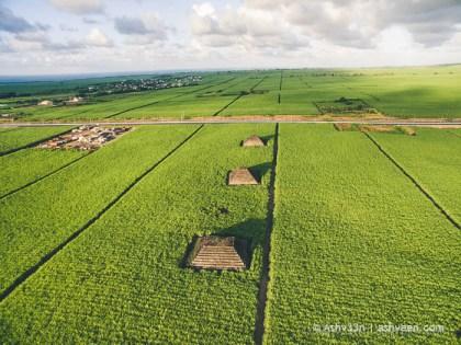Pyramids - Plaine Magnien - Drone Mauritius