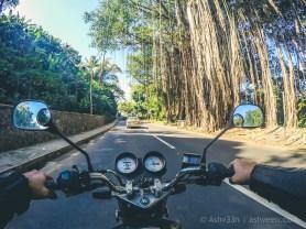 Road Trip Mauritius - Surinam - Haojue 125