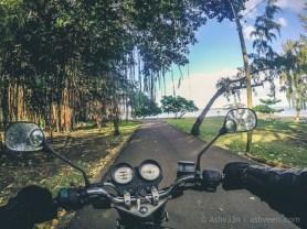 Adventure Trip: Case Noyale - Banian Tree