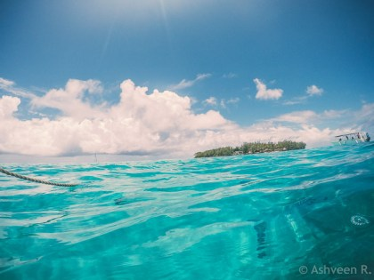 Snorkeling Blue Bay Marine Park - Ile des Deux Cocos