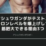 【筋トレ】アシュワガンダがテストステロンレベルを爆上げして筋肥大できる理由3つ
