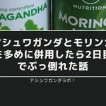 【体験談】アシュワガンダとモリンガを多めに併用したら2日目でぶっ倒れた話【過剰摂取ダメ絶対】