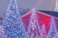 christmas lights displayed in a show