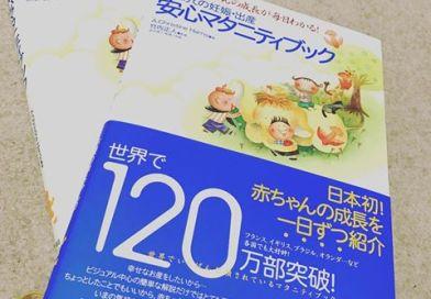 日本で買うべき出産育児準備品・厳選27選!(パート1・ママ用編)/ぐーたら母・りさこ