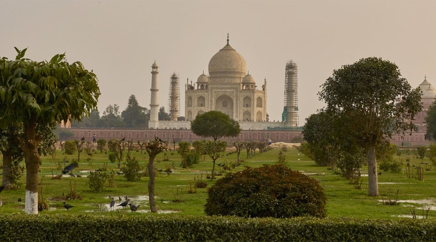 detail from a photo of the Taj Mahal