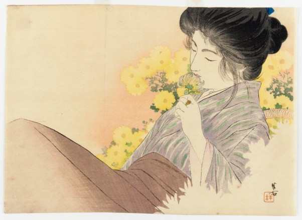 woman and yellow chrysanthemums