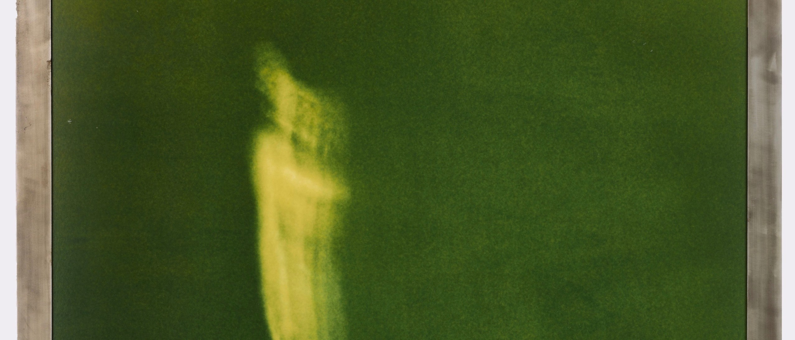 A vaguely humanoid figure (of which the upper two thirds can be seen), distinguished by a light green hue, floats in a hazy dark green background