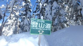 Snow Hiking!