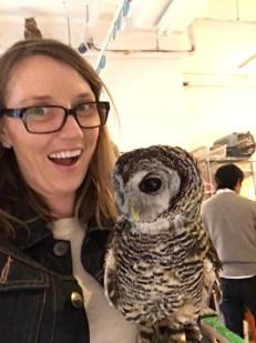 owls like selfies
