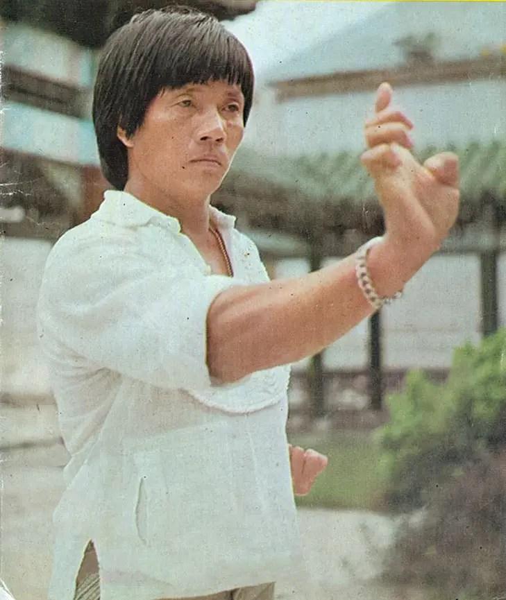 Lau Kar Leung kung fu movies