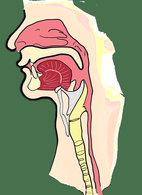 sinusitits best balm inhaler