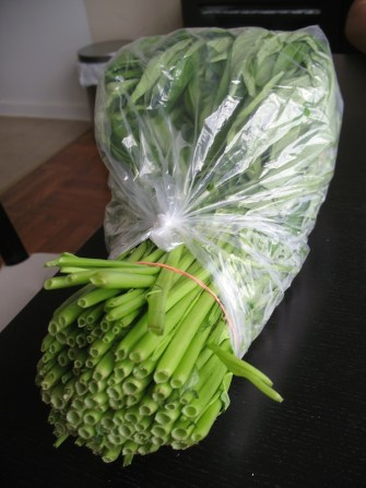 Notice the hollow stems. This is an easy way to recognize this vegetable at the market.