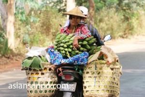 ミャンマー バナナ売り